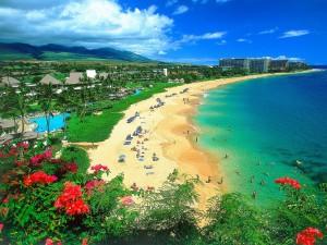 Hawaii-Pic[1]